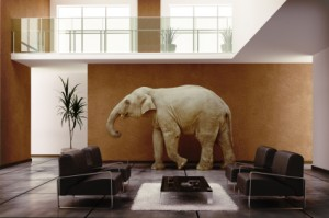 How do you navigate operational change when there's an elephant in the room?