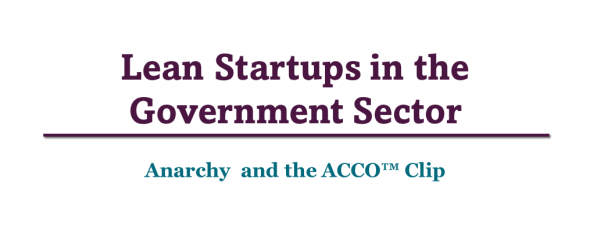 Lean Startups in the Government Sector